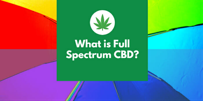 What Is Full-Spectrum CBD?