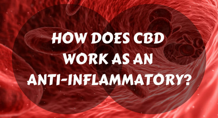 How Does CBD Work As An Anti-inflammatory?