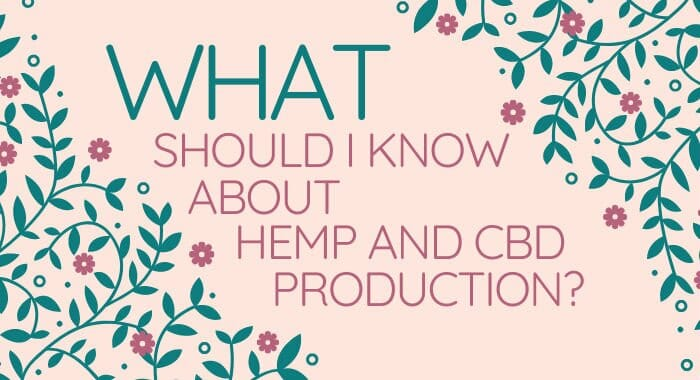 What Should I Know About Hemp And CBD Production?