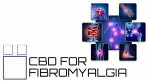 cbd for fibromyalgia reddit