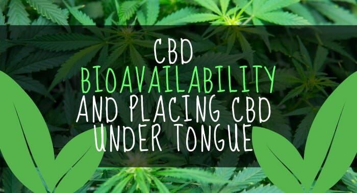 CBD Bioavailability And Placing CBD Under Tongue
