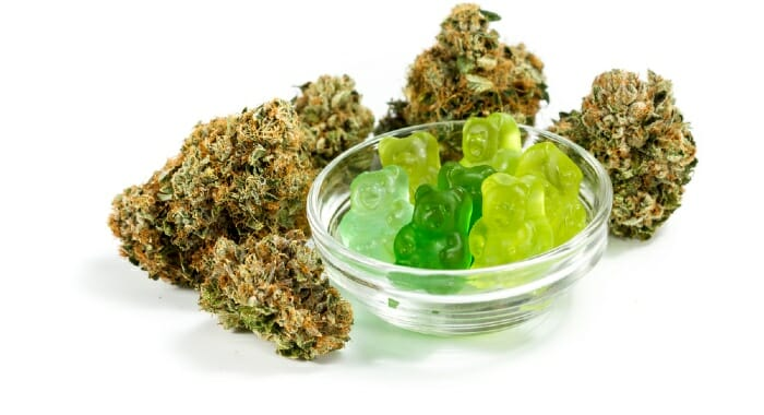CBD edibles, like gummy bears will take a long time to have an effect on you, becuase they go throught the human