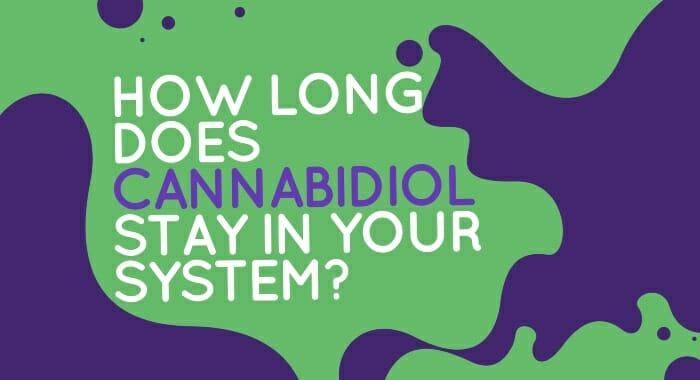 How Long Does Cannabidiol Stay In Your System?