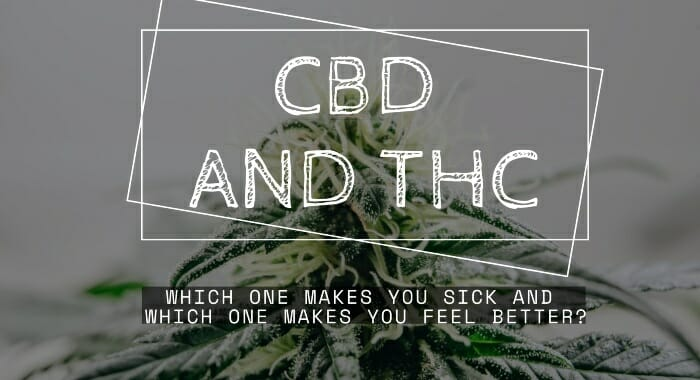 CBD And THC: Which One Makes You Sick And Which One Makes You Feel Better?