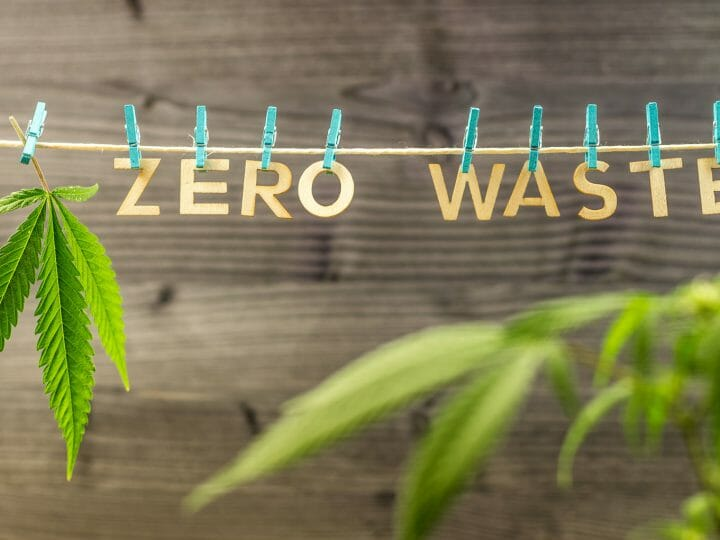 Hemp By-Products: Risk or Treasure?
