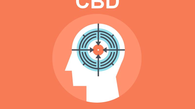 CBD for Mental Focus